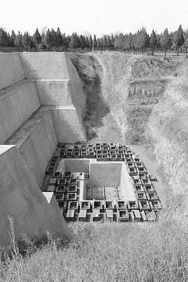 探索·发现:秦公大墓