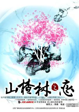 山楂树之恋2011
